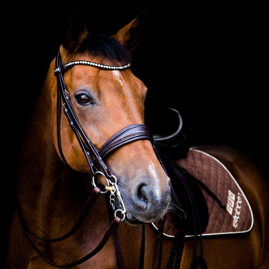 Stubben Switch MagicTack Bridle