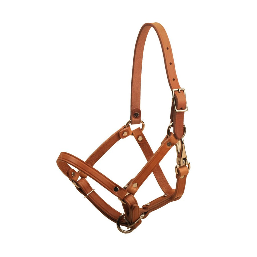 Tory Leather Foal Halter Brown