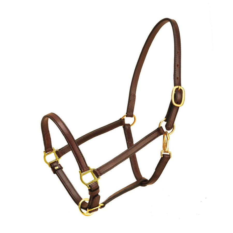 Tory Narrow Leather Halter Havana