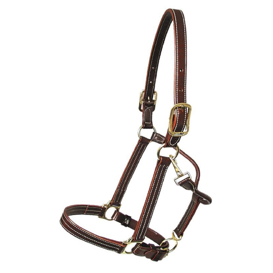 Walsh British Leather Halter Havana