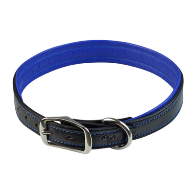 Walsh Signature Leather Dog Collar Black with Royal Blue Padding and Stainless Steel Hardware