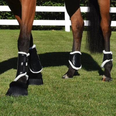 Walsh Sport Front and Ankle Tendon Boots in Pasture