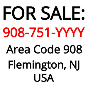 Flemington, NJ : 908-751-YYYY