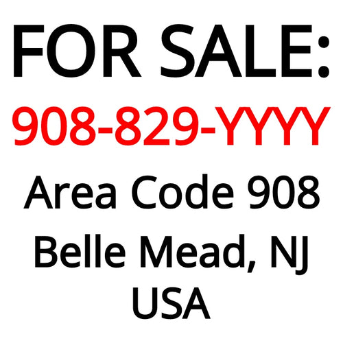 Belle Mead, NJ : 908-829-YYYY
