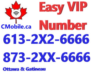 Ottawa & Gatineau 613-2X2-6666 and 873-2XX-6666 VIP number bundle  ending with 6666