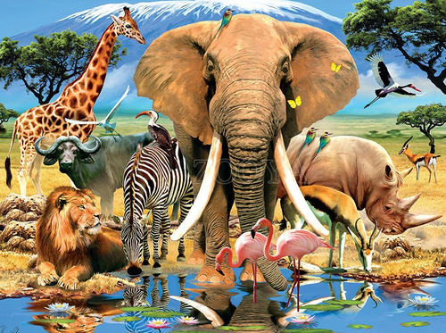Safari Full Square/Round Diamond Painting