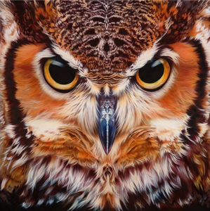 Owls Closed-Up Full Square Diamond Painting