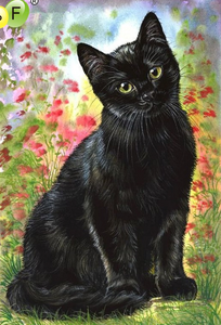 Innocent Black Cat Full Square Diamond Painting