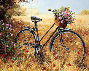 Bike in the Wild 5D Diamond Painting