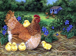 Chicken Family Full Square Diamond Painting