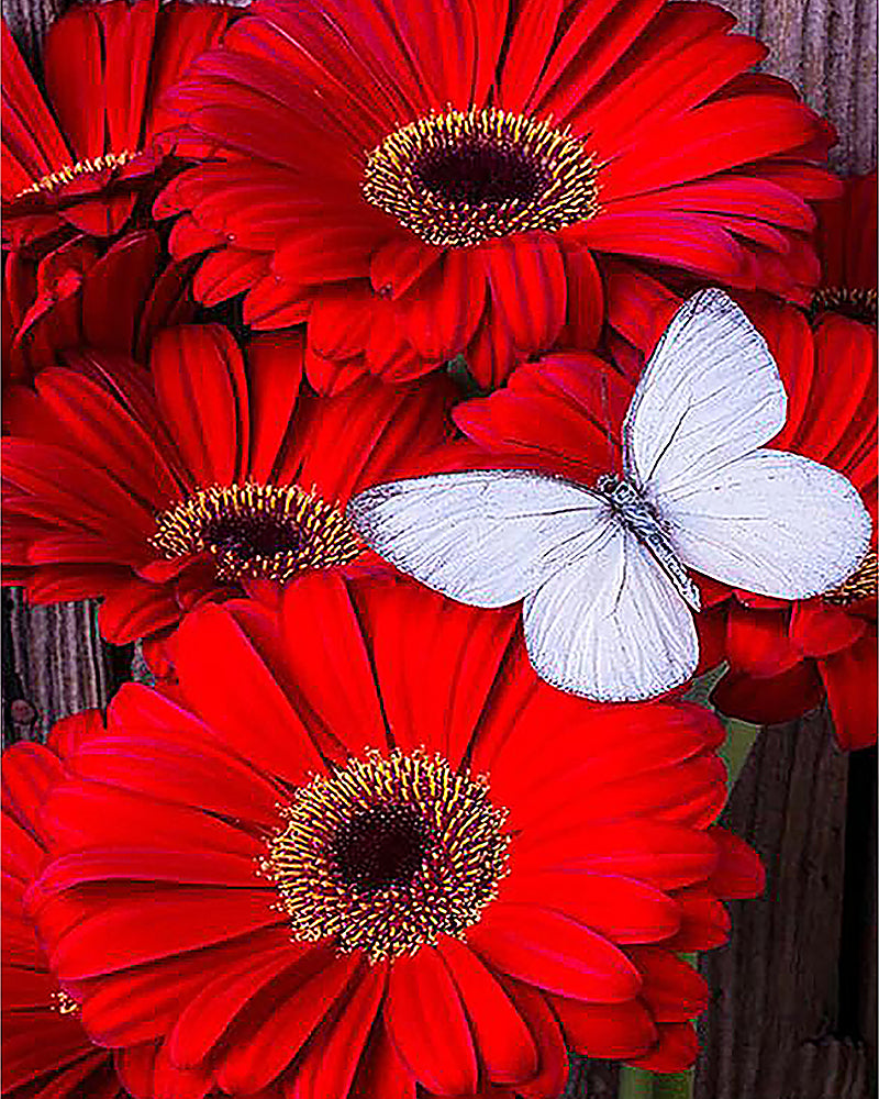 Butterfly Flower 5D Diamond Painting