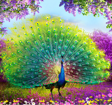 Good Fortune Peacock Full Square Diamond Painting