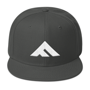 Fit Leaders Logo Snapback - Fit Leaders