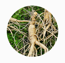 """Cheonjong"" Wild Ginseng Extract"