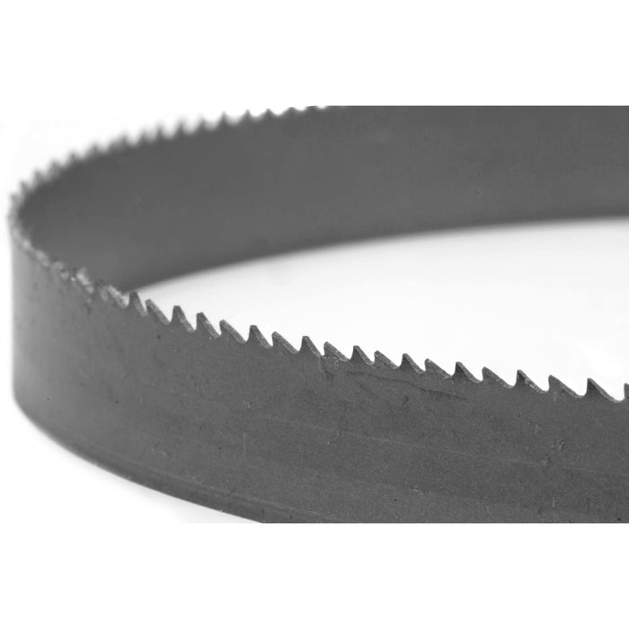WEN BB5650 56.5 Metal Bandsaw Blade with 14 TPI /& 1//2 Width