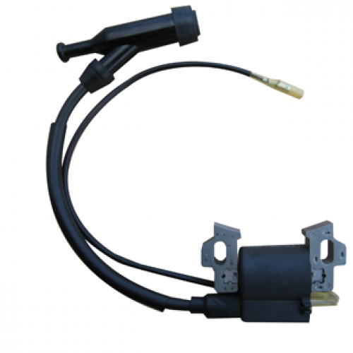 Ignition Coil Assembly-Item: P54809