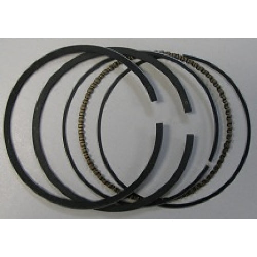 Piston Ring Set-Item: P54790-1