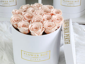 MAGICAL - Roses that can last up to 1 yr