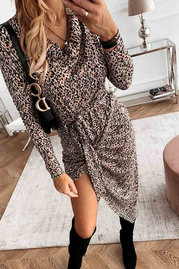 Irregular V-Neck Leopard Print Pleated Dress