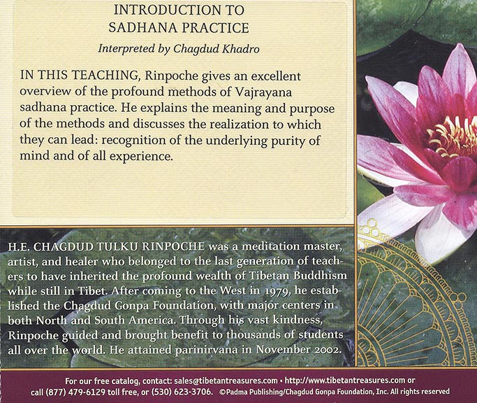 Introduction to Sadhana Practice - Download