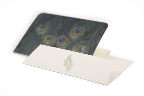 Peacock Feather Notecards