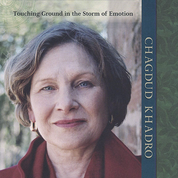 Touching Ground in the Storm of Emotion CD