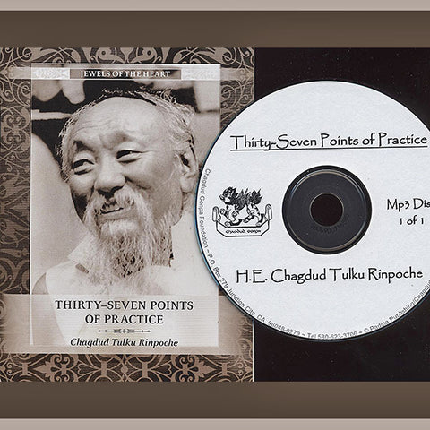 Thirty-Seven Points of Practice - Download
