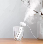 Bottle Cap Humidifier