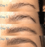 Eyebrow Enhancer Serum