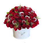 Holiday Red Rose Classic