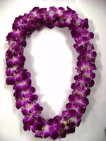 Double Orchid Leis Necklace - Mariams Flowers