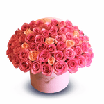 Pink Rose Classic Box - Mariams Flowers