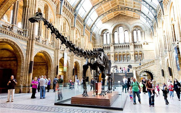 Study at Oxford or Cambridge and become a paleontologist!