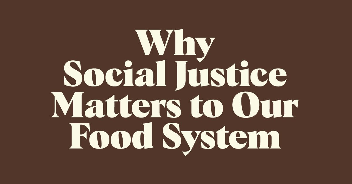 Why Social Justice Matters to Our Food System