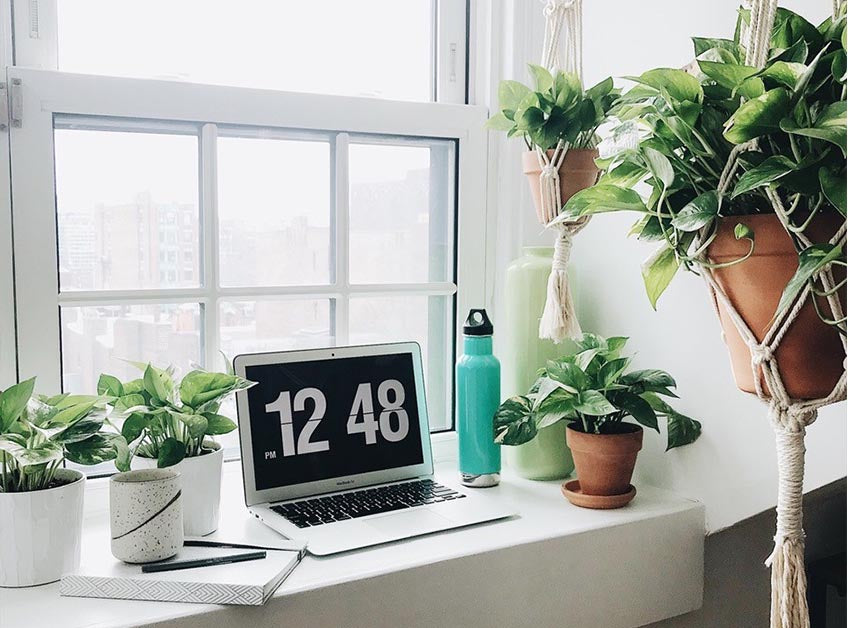 Plants surrounding a laptop and reusable water bottle on a window sill