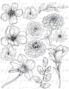 Line drawing floral 2 DARK pack