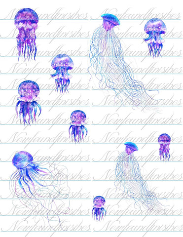 Jellyfish Dark set
