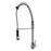 Celie Single Handle Kitchen Faucet with Spring Spout