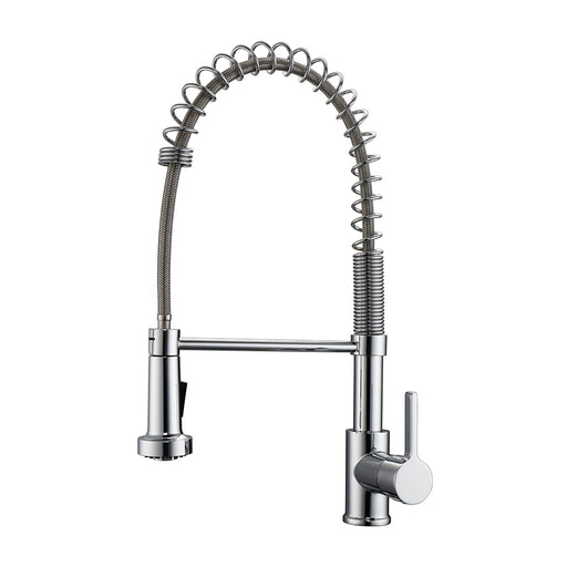 Niall Spring Kitchen Faucet with Single Handle 1