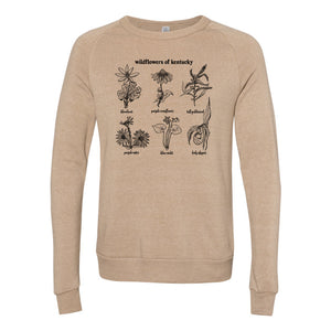 wildflowers of kentucky sweatshirt hill and holler handdrawn
