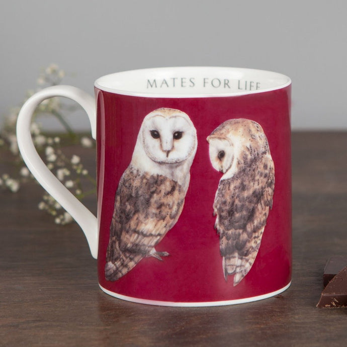 Owl fine bone China mug
