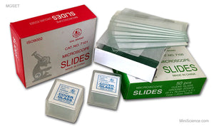 Microscope Slides and Covers