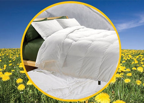 Golden Memory Eco Green Down Alternative Comforter