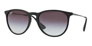 Ray-Ban Women's Erika Sunglasses