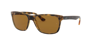 Ray-Ban Polarized RB4181 Sunglasses
