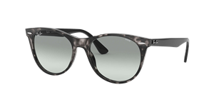 Ray-Ban Wayfarer II Evolve Sunglasses
