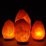 Three Bedrooms and One Family Room Salt Lamp Pack