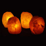 Four 5-7 LB Salt Lamp Pack