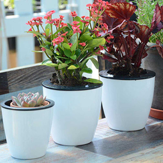 Self Watering Flower Pot - Ellie J Shoppe