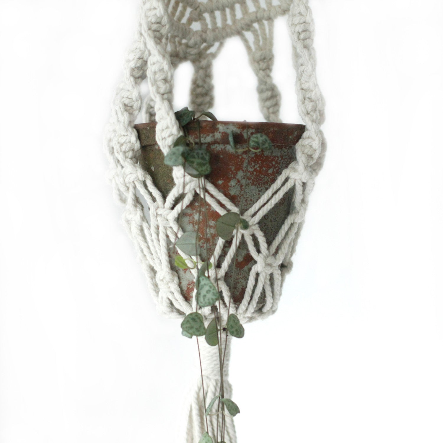 Macrame Pot Holder - Long With Ratten Hoop - Ellie J Shoppe